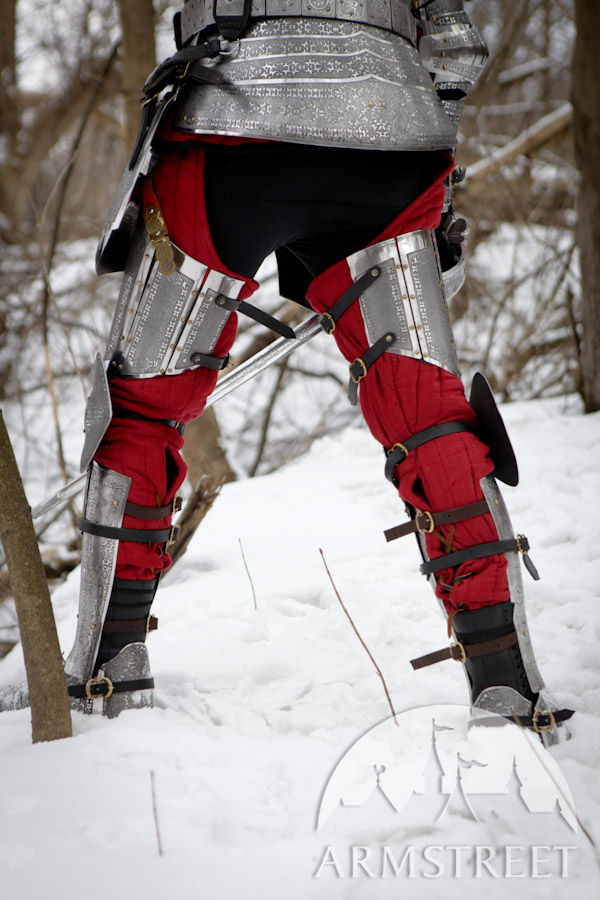 paladin knight armor legs with greaves stainless steel for