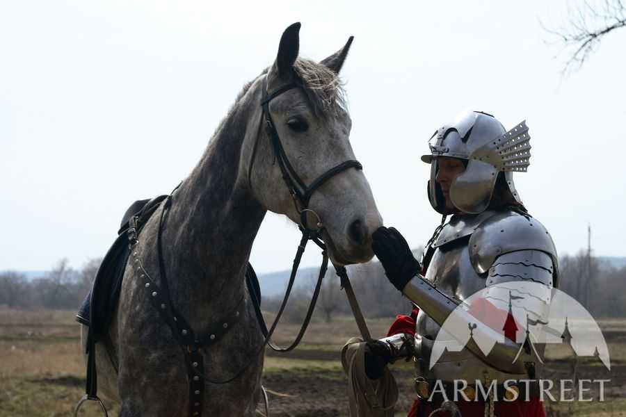 Hussar medieval armor - Polish hussar historically accurate armour set