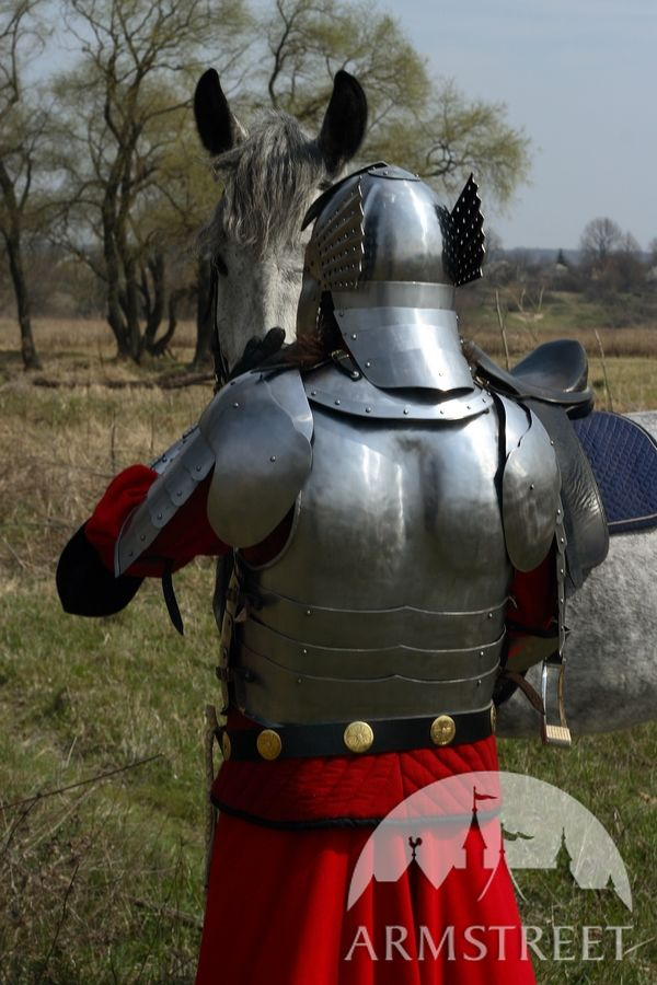 Hussar medieval armor - flexible backplate, wide pauldrons and winged helmet