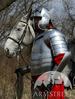 Polish Hussar Knight Plate Armor Suit