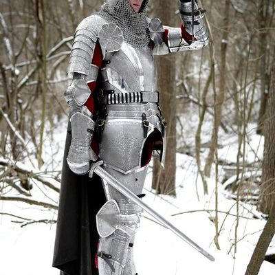 Armor knight paladin medieval SCA armour kit for sale  Available in